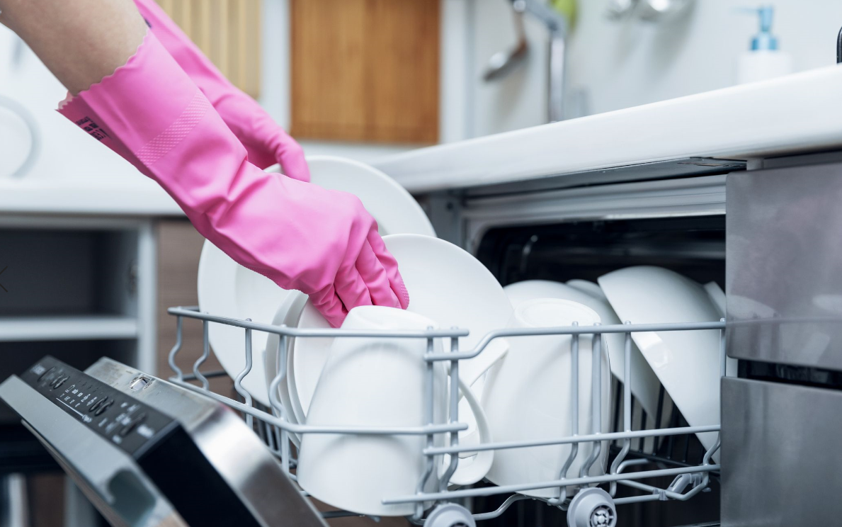 Smelly Dishwasher Cleanin